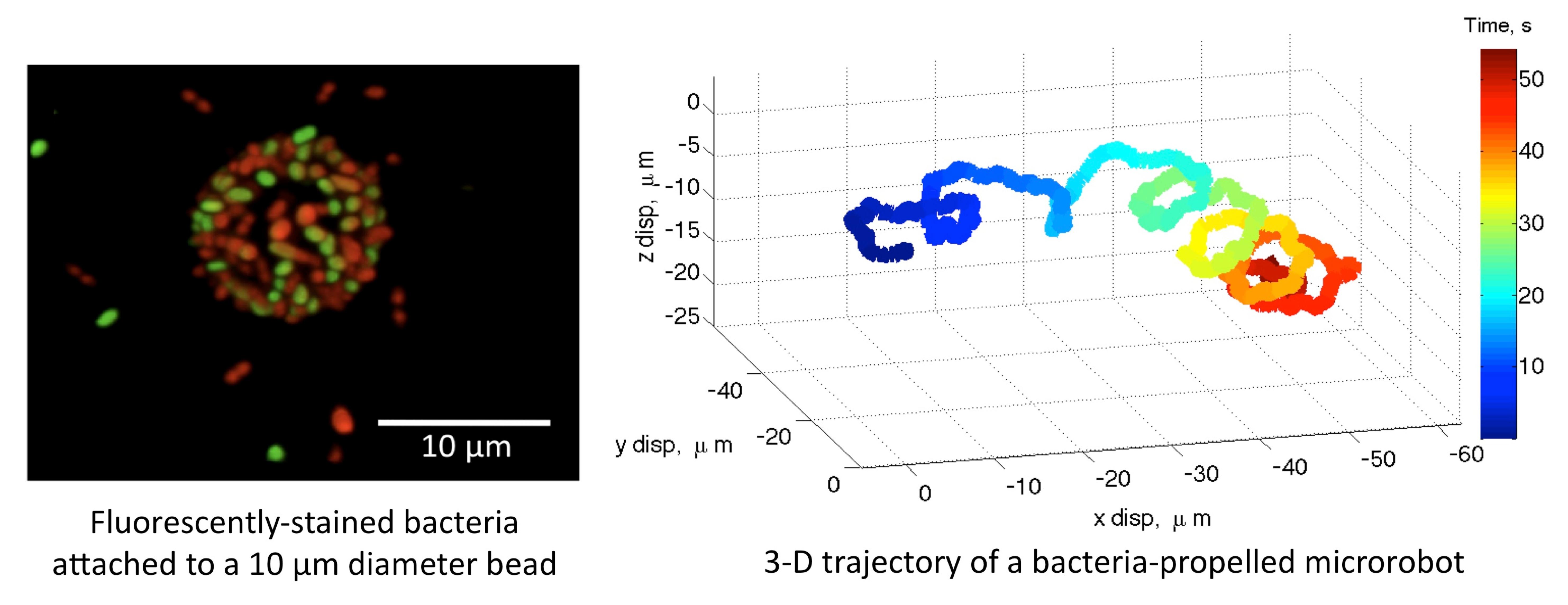CMU_bacteriaMicrorobots